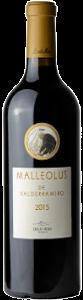 Malleolus Valderramiro